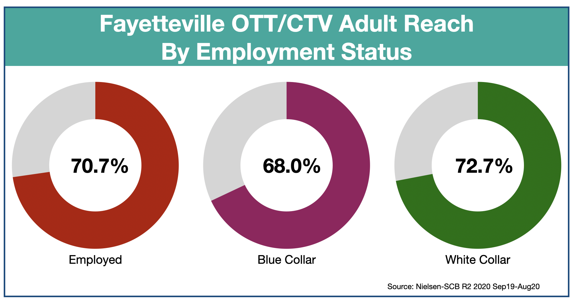 OTT & CTV advertising in Fayetteville, NC-Employment Status